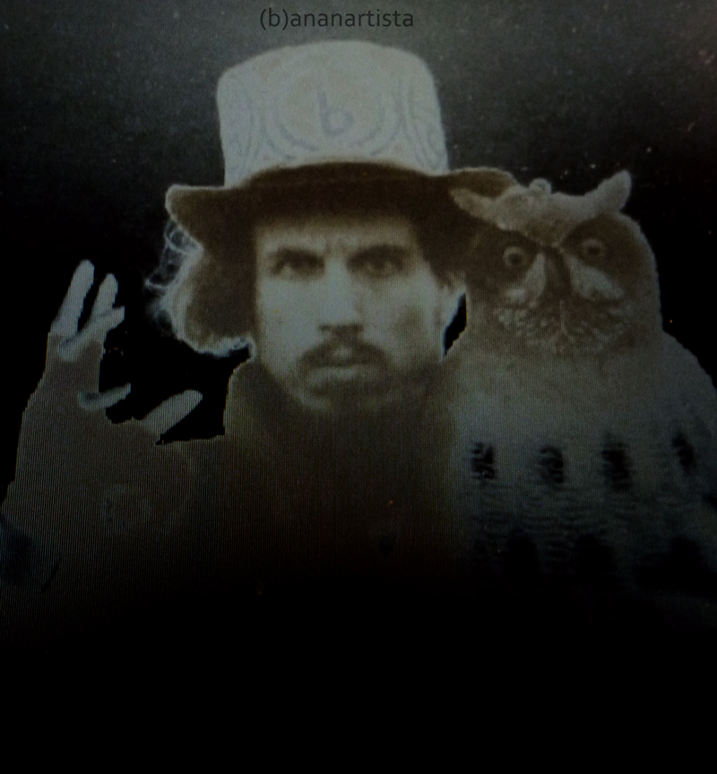 (b)ananartista and the owl