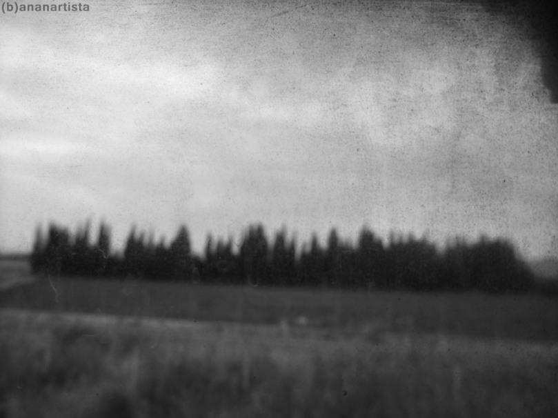 l'isola dei morti fotografia digitale e metafisica di (b)ananartista orgasmo sbuff