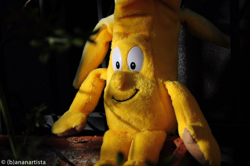 MISTER BANANA photography by (b)ananartista sbuff © 2015 all rights reserved