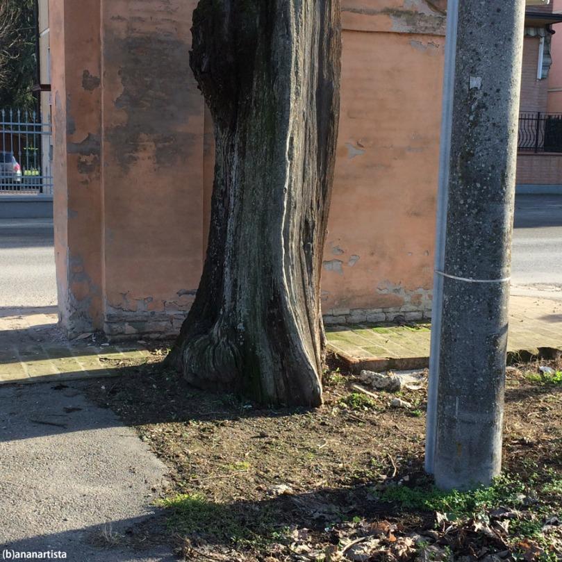 sovrapposizione di piani inclinati: fotografia di (b)ananartista sbuff