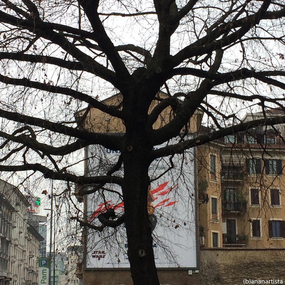 occult advertising: art pop photography tree by (b)ananartista sbuff