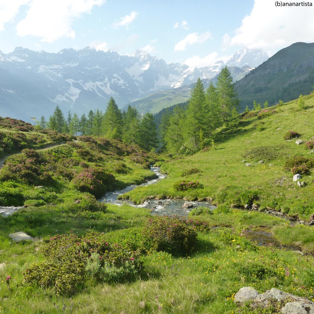 il ruscello incantato: fotografia alpina di (b)ananartista sbuff