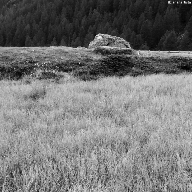 ESAMECRO: landscape black and white nature photography art by (b)ananartista sbuff
