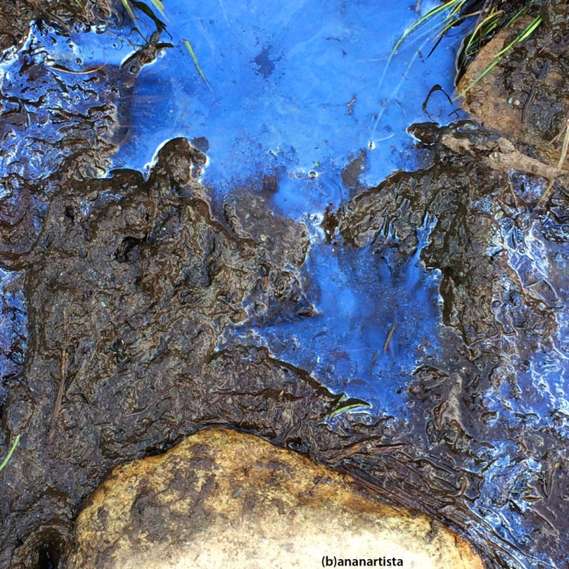 melma blu blue ooze mud: abstract nature photography art by (b)ananartista sbuff