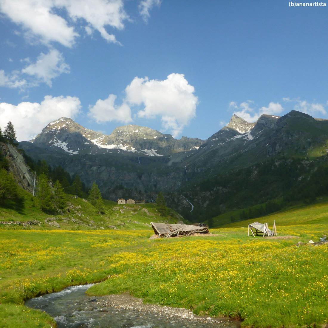 paesaggio alpino di (b)ananartista sbuff art
