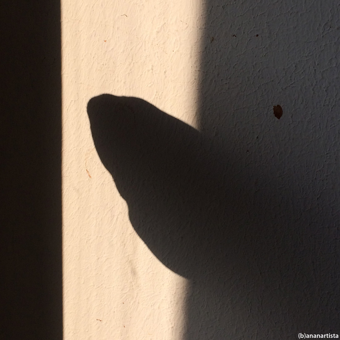 the mystery of dark matter: abstract minimal photography art by (b)ananartista sbuff