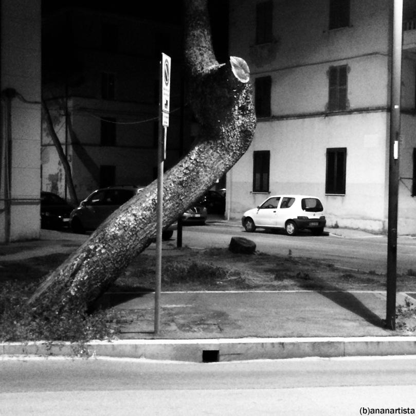 notturno indiano: fotografia urbana di (b)ananartista sbuff