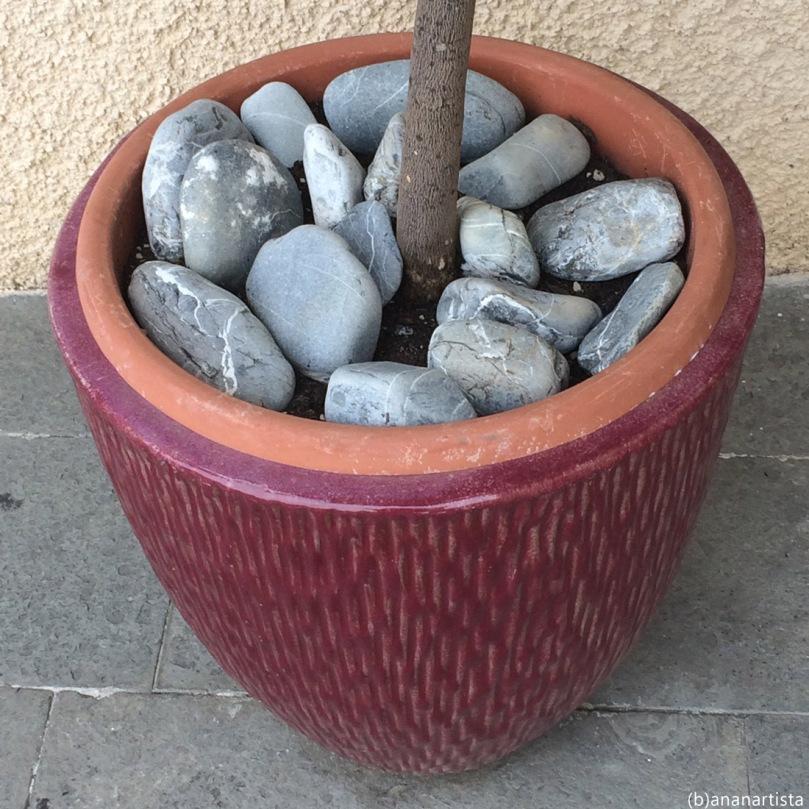 un semplice vaso: fotografia di (b)ananartista sbuff