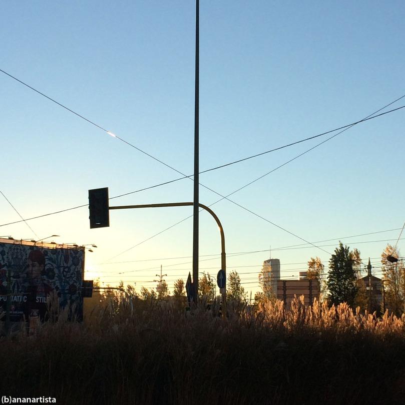 tramonto in città: fotografia di (b)ananartista sbuff