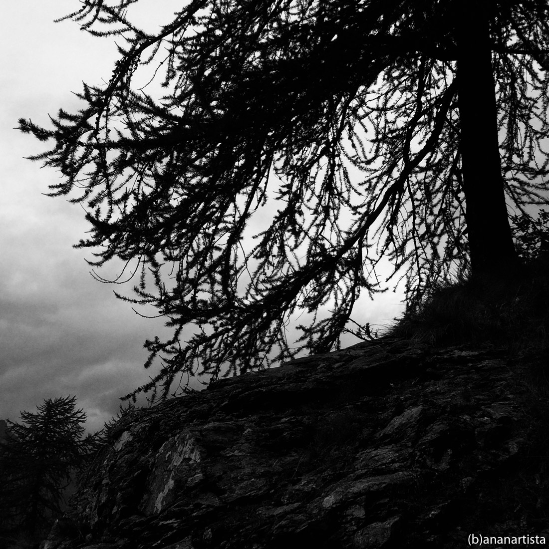 the legend of sleepy hollow: black and white photography by (b)ananartista sbuff