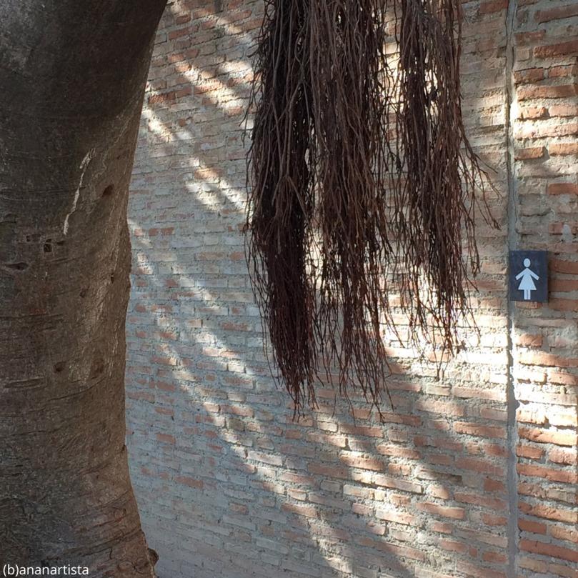 il bagno delle donne: fotografia di (b)ananartista sbuff