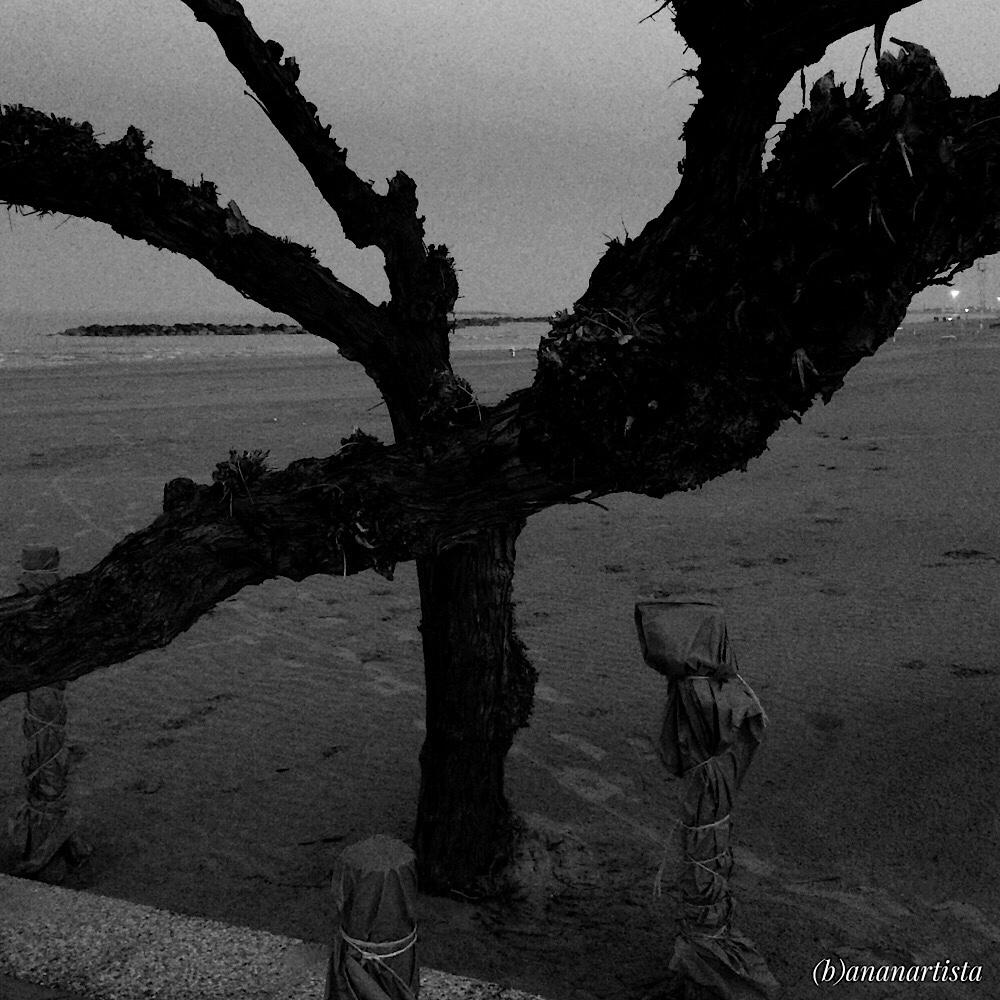 crepuscolo degli dei fotografia di (b)ananartista