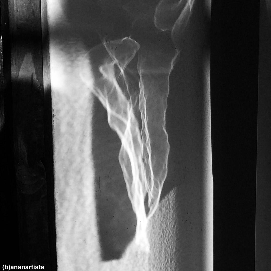 volto sfinge: fotografia di (b)ananartista sbuff