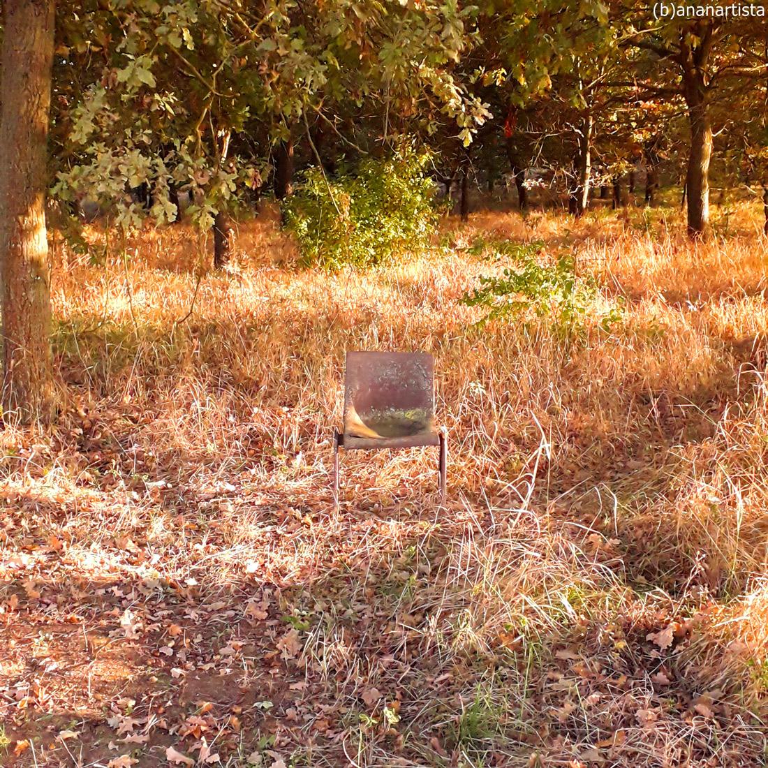 la sedia invisibile : fotografia di (b)ananartista sbuff