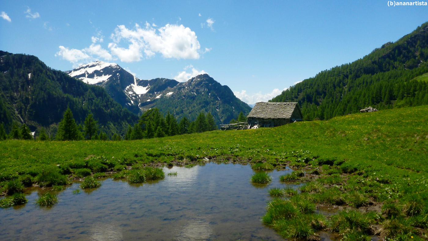 beautiful landscape in the alsp 04 by (b)ananartista sbuff